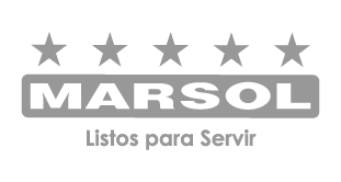 Logo Marsol gris